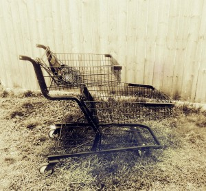 Don't give your customers a chance to abandon their cart on your website.